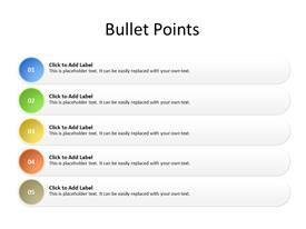 5 point bullet list