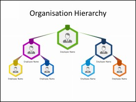 Three level Organization structure