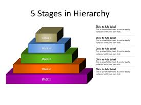 Five stages in hierarchy
